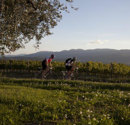 LA CICLOVIA SPOLETO-ASSISI: innamorarsi dell'Umbria in sella ad una bici!