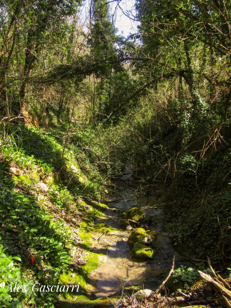 Il sentiero delle lavandaie